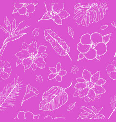doodle floral seamless pattern vector image vector image