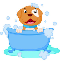 Dog cartoon bath vector