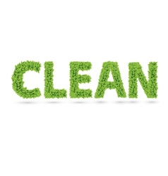 Clean text of green leaves vector