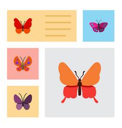 Flat monarch set of violet wing moth danaus vector