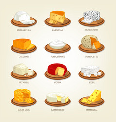 Cheese food like parmesan and mozzarella vector