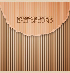 Cardboard texture background vector