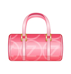 Icon purse vector