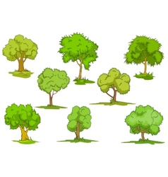 Set of leafy green trees vector image