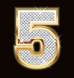 five bling bling vector image