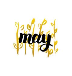 May handwritten lettering vector