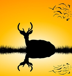 Landscape with deer stag silhouette at sunset vector image