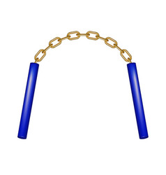 Nunchaku connected by gold chain vector