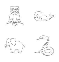 Owl elephantismsnake whaleanimal set vector