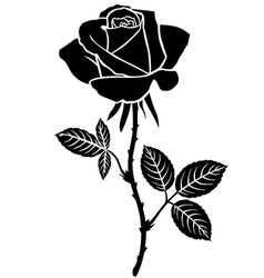 Sweet rose vector