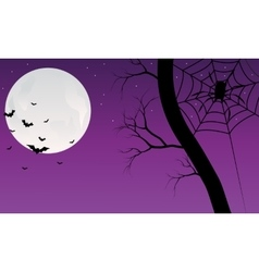 Silhouette of bat halloween backgrounds vector image