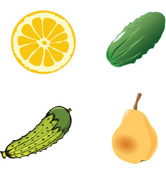 A piece of the cutting lemon on whiteOne green cuc vector image