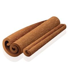 Cinnamon vector image vector image