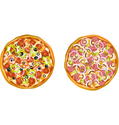 Realistic isolated pizza set vector