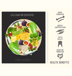 Calcium in food-04 vector
