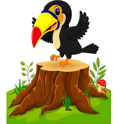 cartoon happy toucan on tree stump vector image vector image
