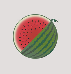 watermelon fruit isolated vector image vector image