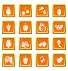 berries icons set orange vector image vector image