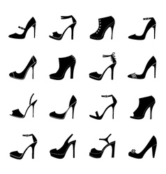 elegant shoes vector image vector image