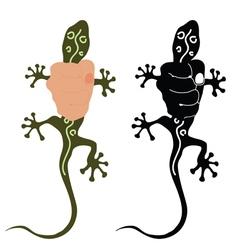 Salamander in hand vector