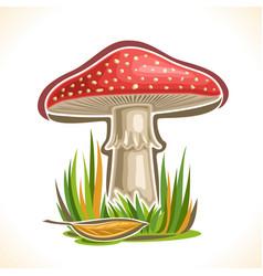 toadstool mushroom vector image