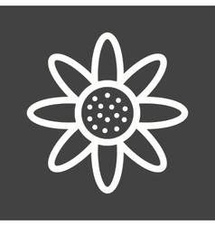 Daisy vector image