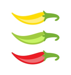 Colorful chilli peppers isolated vector