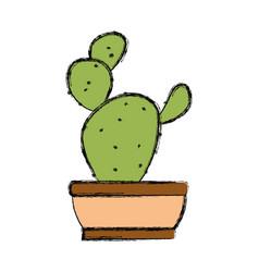 cactus un potted vector image