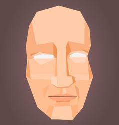 Polygonal face vector image vector image