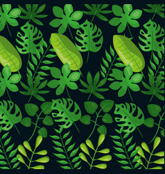 Tropical leaves foliage frond plant botanical dark vector