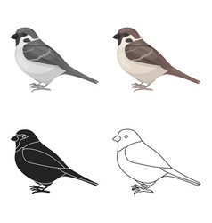 Sparrow icon in cartoon style isolated on white vector