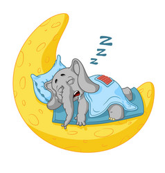 Elephant character he sleeps on the moon vector