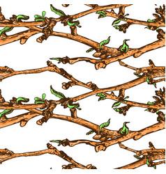 Appleflower sketch pattern1-06 vector
