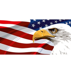 USA FLAG EAGLE vector image