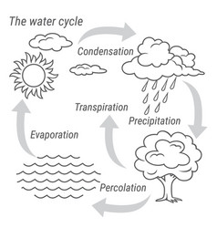 Water cycle black and white vector