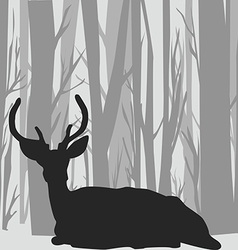 Deer stag silhouette in forest landscape vector