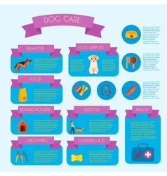 Dog care infographic banner layout vector