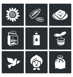 Set of Sunflower Icons Flower Seed Halva vector image vector image