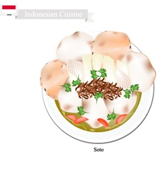 Soto or Indonesian Chicken and Vegetables Soup vector image