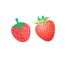 Vibrant delicious strawberries vector