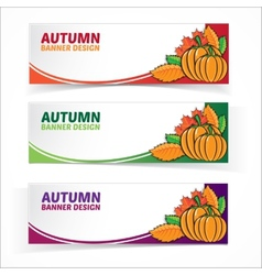 Autumn banner set with pumpkins vector