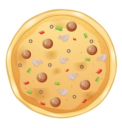 A pizza vector image