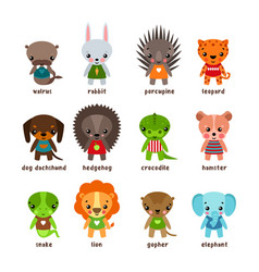 cartoon animals leopard and walrusrabbit and dog vector image