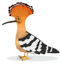 Hoopoe bird vector