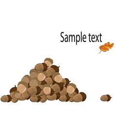 Pile of acorns vector