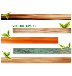 Green leaves with wood vector image