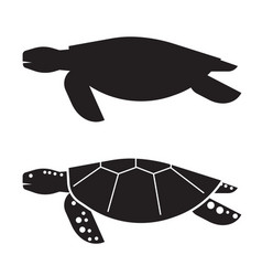 sea turtle outline icon or logo vector image