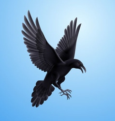 Black raven on blue background vector