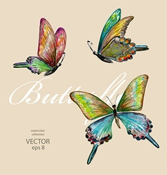 collection of flying butterflies watercolor vector image