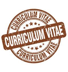Curriculum vitae brown grunge stamp vector